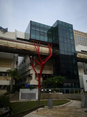 תמיכת אגף - מבנה עץ - המרכז הרפואי תל אביב