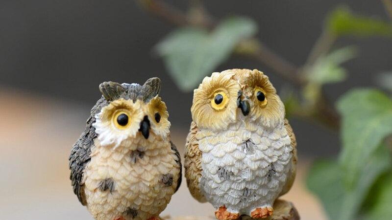 Cute Mini Owl