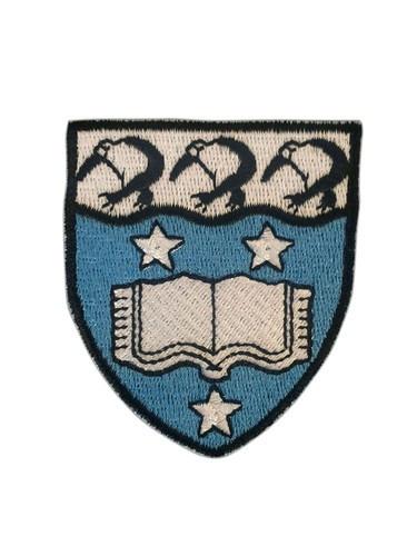 aucc helmet badge.jpg
