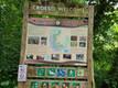 The Dingle Nature Reserve.jpeg