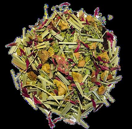 Raspberry Tart Verbena