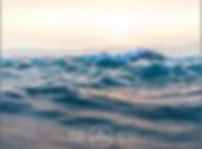 Screen Shot 2020-01-09 at 12.04.05 PM.pn