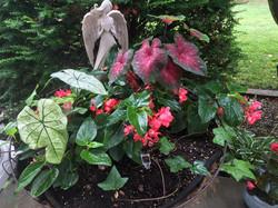 Gardens - AWCI