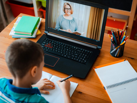 Virtual Online School Visits