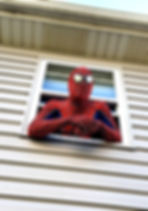 Spidey_edited.jpg