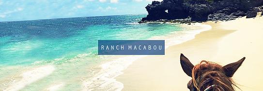 Randonnée à cheval à l'anse Macabou en Martinique