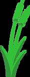 HCH_Logo_Icon.png
