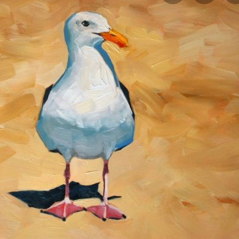 LIVE EVENT (Whitstable) - Seagull on the beach