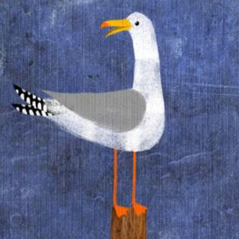 LIVE EVENT (Whitstable) - Seagull