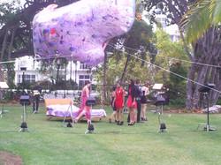 AITS @ Miami Beach Botanical Garden
