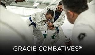 combative image.jpg