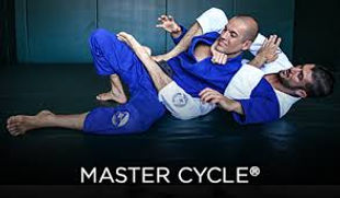 master cycle 2.jpg