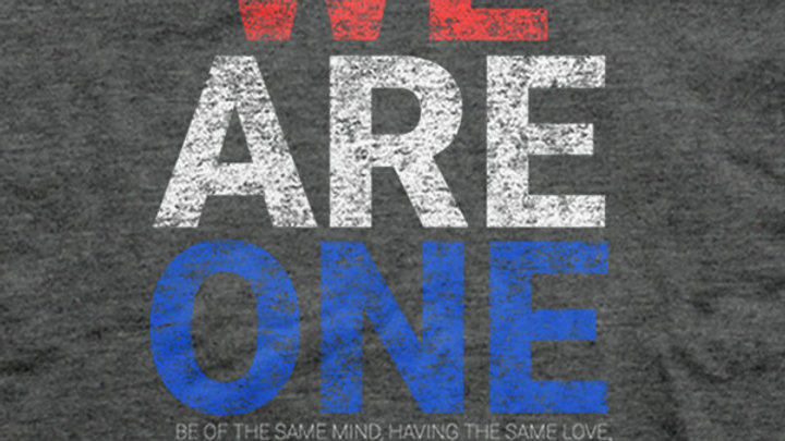 We Are One Patriotic Grey T-Shirt
