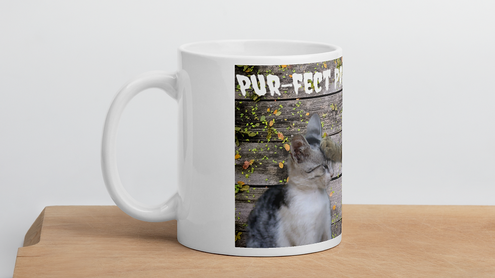 Perfect Prayer- Mug