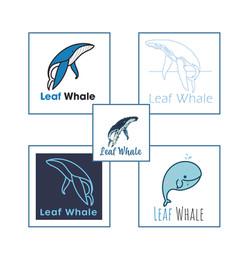 styles logo baleine_Plan de travail 1_Pl
