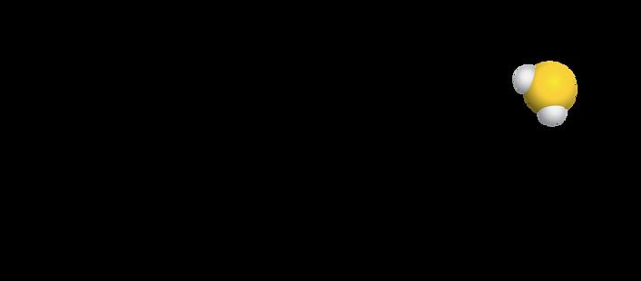 Sulfagenix_Logo_1.png