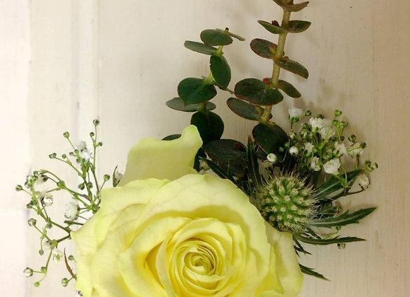 Eryngium & White Rose Buttonhole