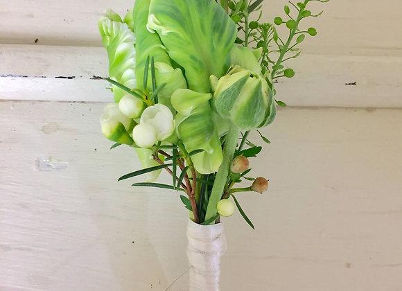 Parrot White Tulip Buttonhole