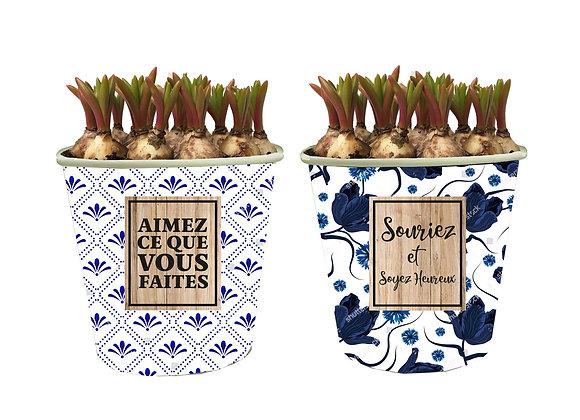 Muscari French Pot