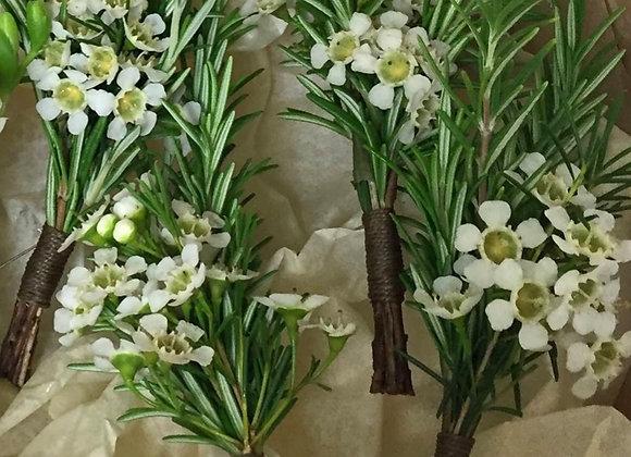 Wax Flower & Rosemary Buttonhole