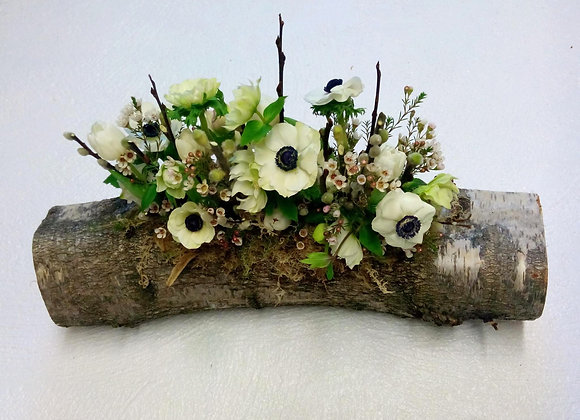 White Anemone Log Display