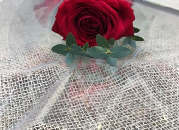 Single Red Rose With Foliage in Cellophane