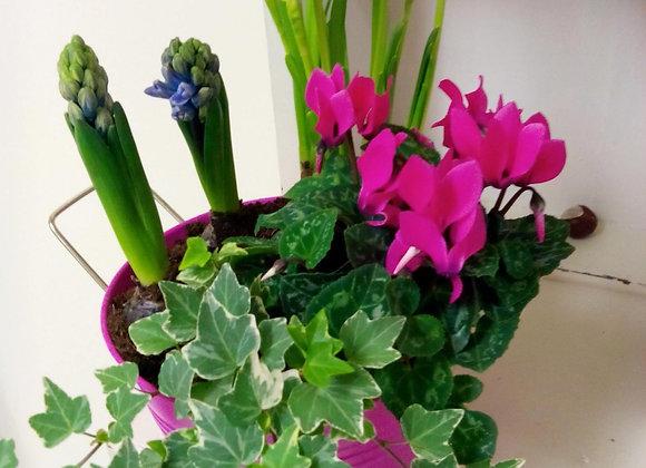 Vibrant Outdoor Spring Planter