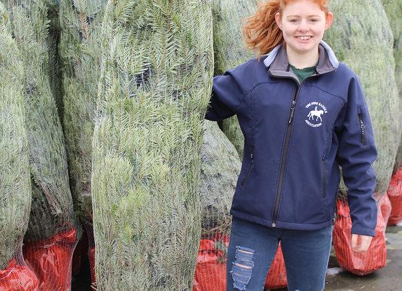 5 ft. Pot Grown Nordman Fir Christmas Tree