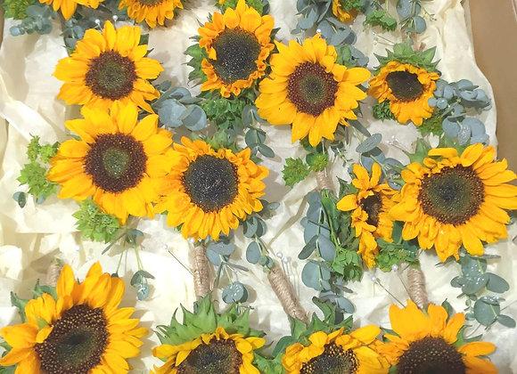 Stunning Sunflower Buttonhole
