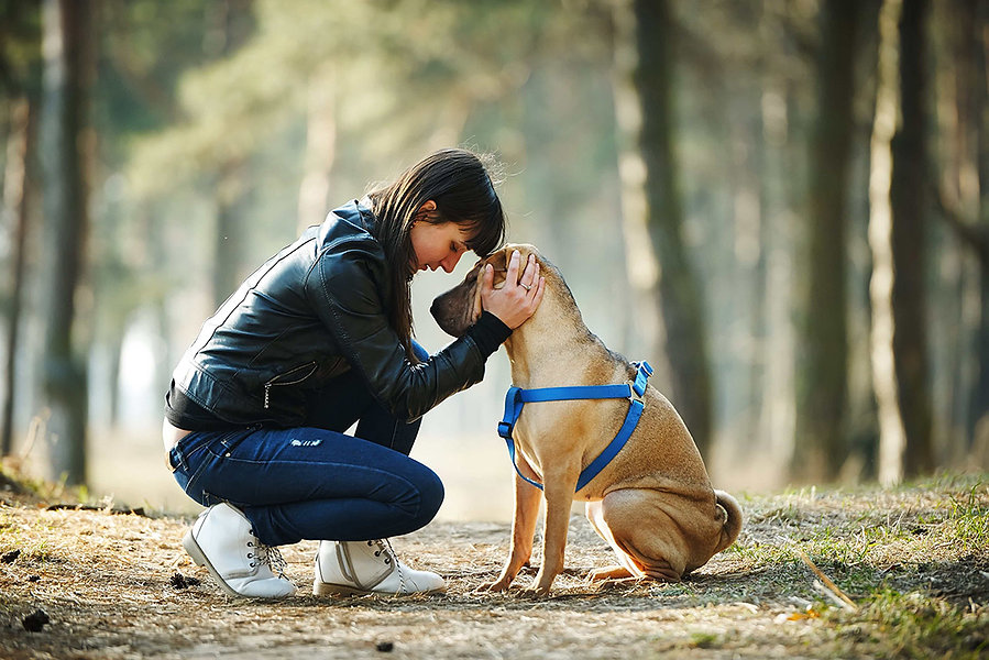 girl-with-service-dog-in-the-park-min_AL