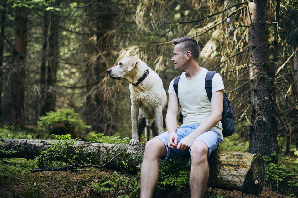tourist-with-dog-in-forest-V457J9N-min.j