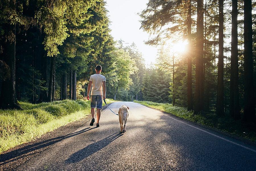 summertime-with-dog-min_ALT.jpg