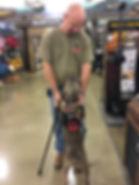 PTSD, TBI, MST, Veteran, service dog, SD4V