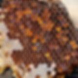 honeycomb-2142730_1920.jpg