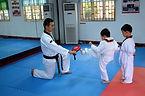 Anfänger Taekwondo Lektion