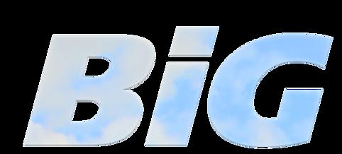 BiG X logo