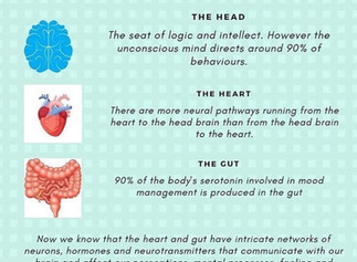 The Trifecta That Creates Society--The Heart, the Brain, and the Gut
