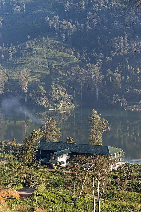 ceylon-tea-trails-2.jpg