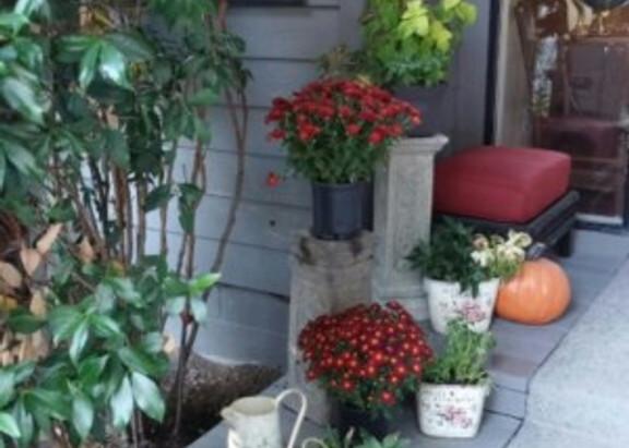 September Porches and Pumpkin Muffins
