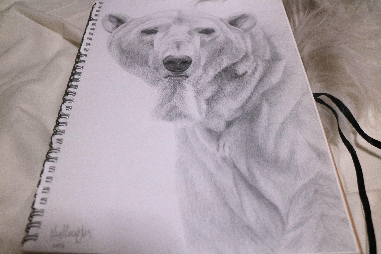 TWS Polar Bear