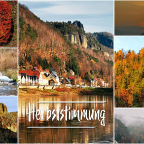 Herbststimmung in der Nähe der Elbaussicht - Krippen