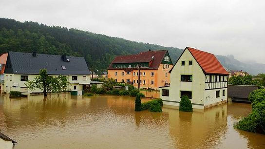 Blick zur Elbaussicht - Krippen und den Dampfer Pirna