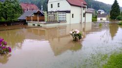 Hochwasser 2013 - Die Liegewiese der Elbaussicht mit steigendem Hochwasser
