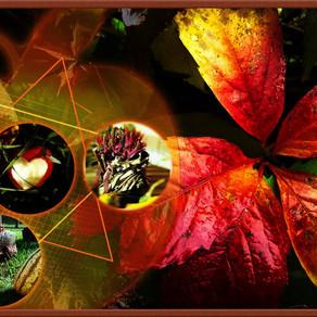 Herbstdeko in den Ferienappartments Elbaussicht - Krippen