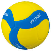 Mikasa VS170W Spikezone Volleyball