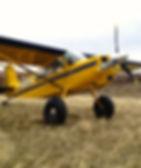 Scout bush plane