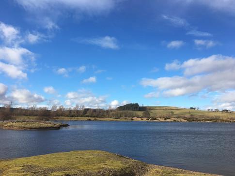 Branton Lakes - Nature Reserve