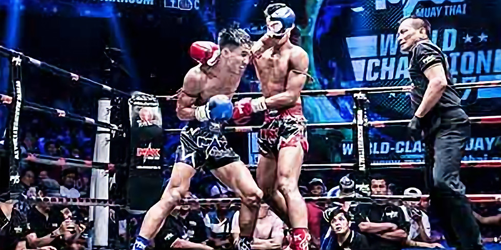 Dutch Kickboxing / MMA