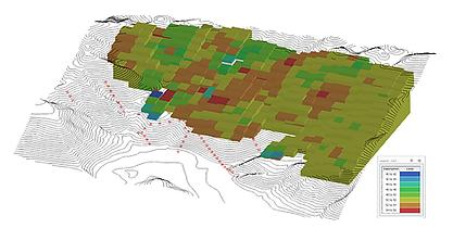 Geoestatistica 1.png