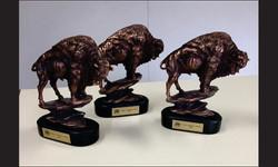 Buffalos1